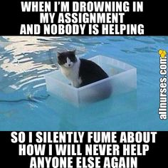 Is this you every time? #Funnymemes #Funnynurse #Nursejokes #Nurse #Nursing #Nursinghumor #Nursehumor #Nursingschool #Nursingproblems #Nursememes #Nursingstudent #Nurselife #StudentNurse #Nursesdoitbetter #NURSEpiration #instagood #RegisteredNurse #scrubs
