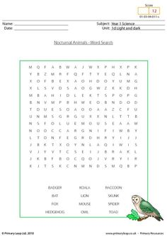 nocturnal animal word find printable steam activities. Black Bedroom Furniture Sets. Home Design Ideas