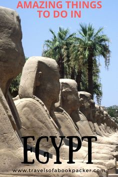 Amazing things to do in Egypt