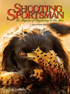 One of my favorite covers, beautiful photo of Boykin Spaniel Boykin Spaniel, Spaniels, Hunting Magazines, Game Birds, Mans Best Friend, Dog Life, Puppy Love, I Am Awesome, Puppies