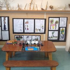 ..drawings, dialogue and clay sculptures. document inquiry about trees...