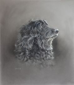 Dog art by Amy Little. Emma, 2014. Soft pastel on paper.