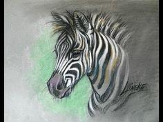 Dit is mijn filmpje ik heb hem gekozen omdat ik zelf heel erg van paarden houd. En ik vond het gewoon een super leuke zebra!