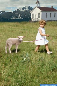 girl with her pet lamb