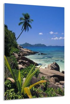 Tropical Beach, La Digue Island, Seychelles Photographic Print by Angelo Cavalli at Art.com