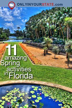 Travel | Florida | Spring | Activities | Local Finds | Hidden Gems