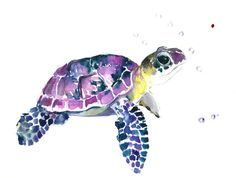 Sea Turtle, Original watercolor painting, 9 X 12 in, purple blue yellow see…