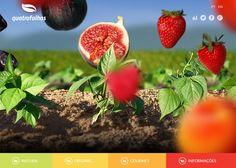 Quatro Folhas #webdesign #inspiration #UI