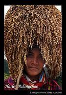 harvest headdress - Google Search