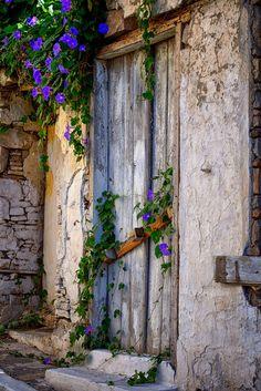 Old door and morning glories in Samos, Greece