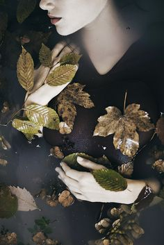 monia merlo - it is autumn in my heart https://www.flickr.com/photos/monia_merlo/10643013565/