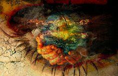 Dag 279 van 2555: woorden – dimensie – universeel – zelfvergeving en zelfcorrectievezinnen