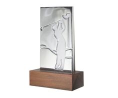 Peça: bidimensional com relevos, 16cm de altura.  Materiais disponíveis: alumínio (prata) ou bronze (dourado ou patinado).  Base: madeira natural ipê ou madeira revestida de fórmica preta, 12x6x4cm.  Placa cortesia: aço inox (prata) ou latão (dourada), 6x2cm.