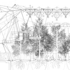 The Icelandic Forestry Commission 2012 The Bartlett School of Architecture  'A century ago, most Icelanders had never seen a tree. Fifty years ago, few Icelanders believed that trees of any size to speak of could grow in Iceland. Planting trees w...