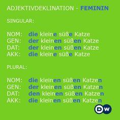Adjektivdeklination - Feminin