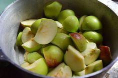 apples in bowl lisa amstutz