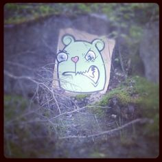 Today I was walking in a forest and I saw a bear hiding behind a bush...