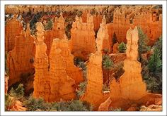 Bryce Canyon = The Hoodoos