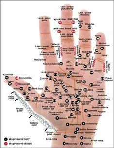 Všechno je to ve vaší dlani: Tiskněte body podle toho, kde vás bolí Acupuncture Points, Acupressure Points, Hand Reflexology, Acupressure Therapy, Dental Health, Stress And Anxiety, How To Relieve Stress, Human Body, Health Fitness