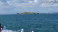 JohnLiuOfficial 20160718 Waiheke Island NZ Residency:  https://www.instagram.com/p/BIBknhbghh9/  #Vlog #Vlogs #Vlogger #Vloggers #Blog #Blogs #Blogger #Bloggers #YouTube #JohnLiuOfficial #Island #Waiheke #Dating #Residency #NZ #NewZealand