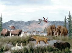 Late Glacial faunal assemblage, many of which crossed the land bridge into the Americas from Eastern Siberia by Kit Mather