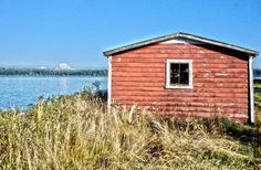 "Get 15% off with code: Pin15       TITLE: Anderson Boathouse  Anderson Boathouse - Photographic Print - A long deserted, barn red boathouse on Anderson Island and Mt. Rainier south of Tacoma and Seattle, WA.   Available sizes:  8""x10"" 11""x14"" 12""x18"" 16""x20"" 20""x30"""