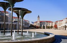 Winter Campus - photograph by: Mark McKinney -- Texas Christian University campus in December
