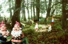 The Gnome Reserve & Wild Flower Garden - fun family day out - Attraction Devon. This place is total madness but a hilarious and fun day out with kids- the staff couldn't be nicer.