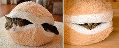 24 Ideias de móveis sensacionais para os amantes de gatos que ...
