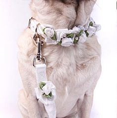 More people than ever are having their pets at their weddings. Collars, leashes and harnesses for special occasions. From $28.50