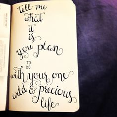 Tell me, what is it you plan to do with your one wild & precious life? -Mary Oliver