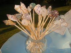 6 Inch Large Seashell Toothpicks