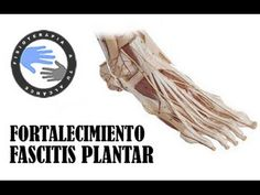 FORTALECIMIENTO, Fascitis Plantar sin dolor (sentados y toalla)