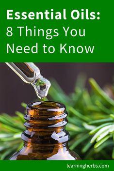 medicine for big pines