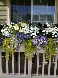 13 Most Wonderful Front Porch With Flower Boxes Ideas - Balcony Garden Flower Boxes Deck, Railing Flower Boxes, Railing Planter Boxes, Window Box Flowers, Balcony Flowers, Flower Planters, Flower Pots, Window Boxes, Porch Boxes