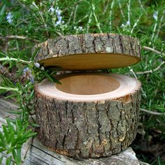Rustic ring/trinket box with bark on it