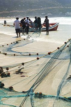 Trek fishermen surround their boat at the beach and pull up fishing nets on shore, Fishhoek Bay, South Africa Holiday Destinations, Cape Town, Packaging Design, Trek, South Africa, Remote, Fishing, Around The Worlds, Spaces