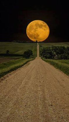 Road to the Harvest Moon