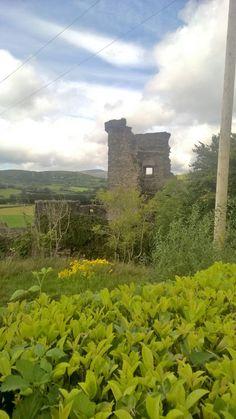 Carriganass Castle