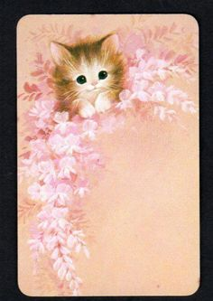 Cat Kitten Posing Ornate Jewels Feathers Blank Greeting Note Card NEW