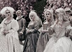 Ladies of the White Court | The North Realm