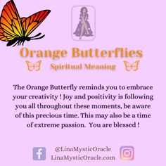 Spiritual Meaning, Spiritual Enlightenment, Spiritual Awakening, Butterfly Symbolism, Butterfly Meaning, Spirit Animal Totem, Animal Spirit Guides, Color Meanings, Animal Meanings
