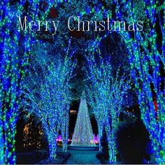 The Sunday's Jazz Brunch.  Stop by and enjoy today's Merry Christmas Music Mix  Click the link to Check Out today's playlist. =>http://www.oldschoolmusicmix.com/Sjm94Tg #MerryChristmas#Oldschoolmusic#SmoothJazz#SundayBrunch
