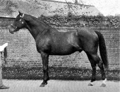 Isinglass(1890)(Colt) Isonomy- Deadlock By Wenlock. 4x5 To The Baron & Pocahontas, 4(C)x5(C)x 5(F) To Birdcatcher, 5(C)x5(F)x 5(F) To Touchstone, 5x5 To Melbourne. 12 Starts 11 Wins 1 Second. Won 1893 English TC (2000 Guineas, Epsom Derby, St Leger S), Ascot S(Eng), Ascot Gold Cup(Eng), Princess Of Wales's S(Eng), Eclipse S(Eng), Middle Park S(Eng), New S(Eng), Jockey Club S(Eng). Died In 1911.