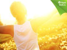 #teverdeconcitricos TOMA LO MEJOR DE LA VIDA. Es importante saber que los rayos solares brindan enormes beneficios a tu cuerpo como la esclerosis múltiple y la osteoporosis. No olvides utilizar un bloqueador solar y sólo tomar el sol por 10 minutos diarios en horarios en dónde no sea tan intenso. Para hidratarte adecuadamente Orient Tea verde con cítricos, una deliciosa bebida endulzada con stevia 100% natural que te ayudará a refrescarte sanamente.