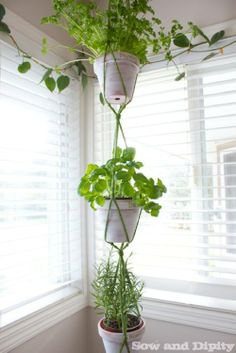 Easy DIY Macrame Hanger - Sow & Dipity #mpinterestparty