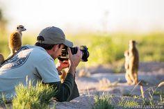 30 Scènes Féeriques que vivent vraiment les Photographes Animaliers - page 3