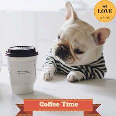 Coffee time meme http://ift.tt/2mafO3N
