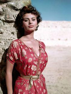 Sophia Loren   Sophia Loren, 1950s Posteres na AllPosters.pt