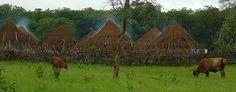 Guinea Bissau Village